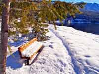 Lakeside Bench in Snow