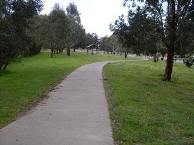 My Nature Walk